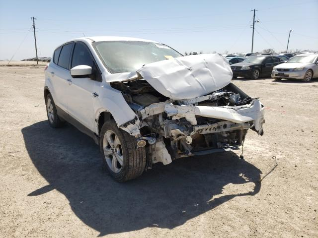 Salvage cars for sale from Copart Temple, TX: 2015 Ford Escape SE