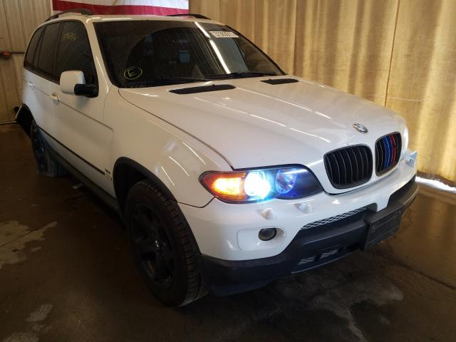 Salvage cars for sale from Copart Avon, MN: 2004 BMW X5 3.0I