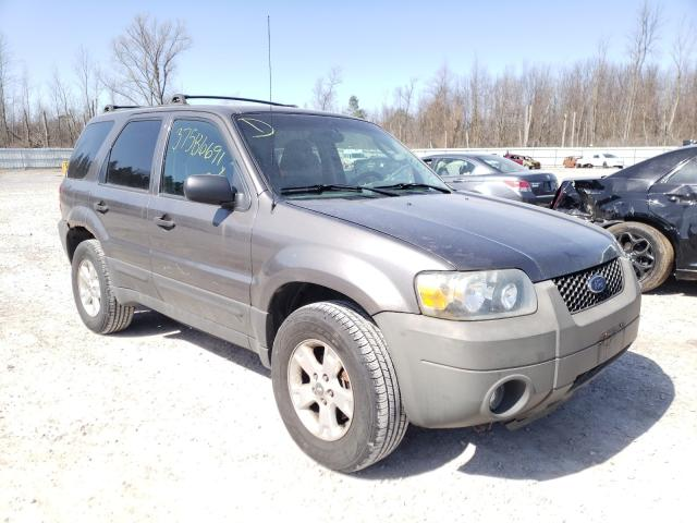 Salvage cars for sale from Copart Leroy, NY: 2006 Ford Escape XLT