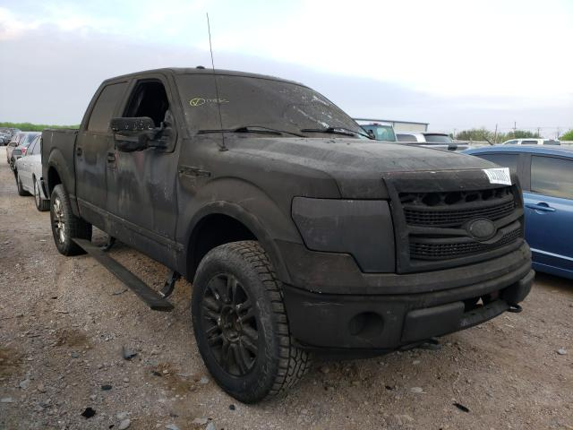 2010 Ford F150 for sale in Mercedes, TX