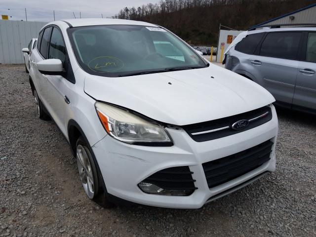 Salvage cars for sale from Copart Hurricane, WV: 2013 Ford Escape SE