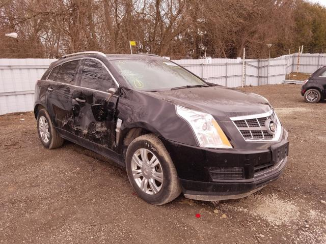 Salvage cars for sale from Copart London, ON: 2010 Cadillac SRX Luxury