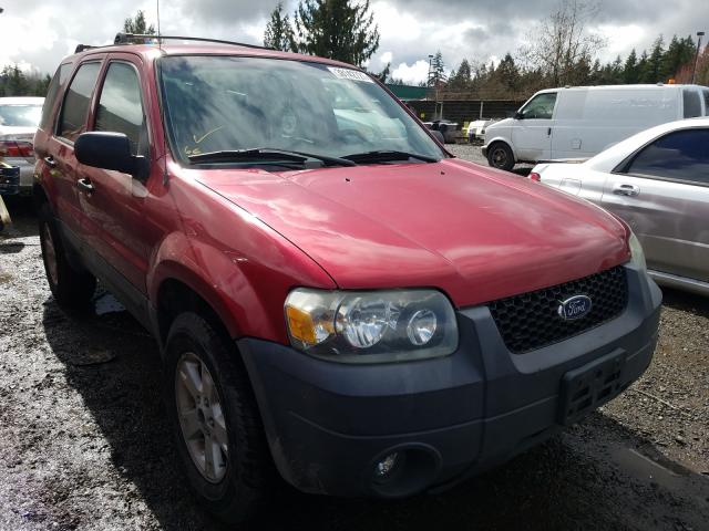 Salvage cars for sale from Copart Graham, WA: 2005 Ford Escape XLT