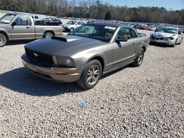 FORD MUSTANG 2005 1