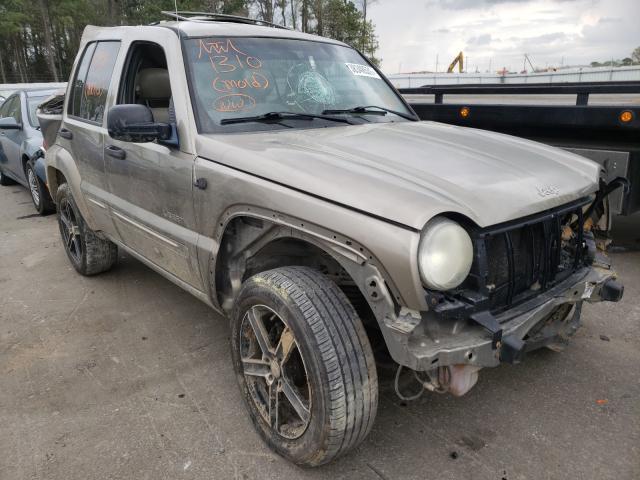 1J4GL58K94W102838-2004-jeep-liberty