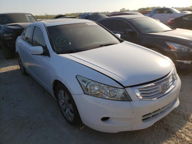 Salvage cars for sale from Copart Temple, TX: 2008 Honda Accord EXL