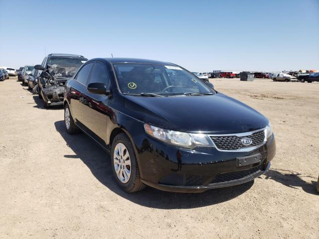 Salvage cars for sale from Copart Amarillo, TX: 2011 KIA Forte EX