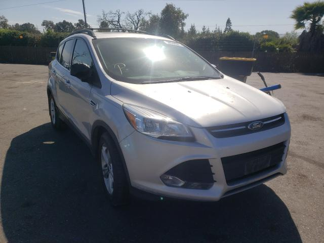 Salvage cars for sale from Copart San Martin, CA: 2014 Ford Escape SE