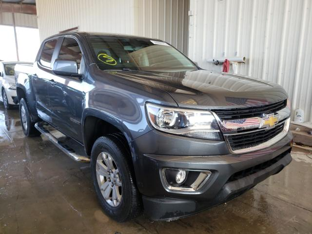 Salvage cars for sale from Copart Homestead, FL: 2016 Chevrolet Colorado L