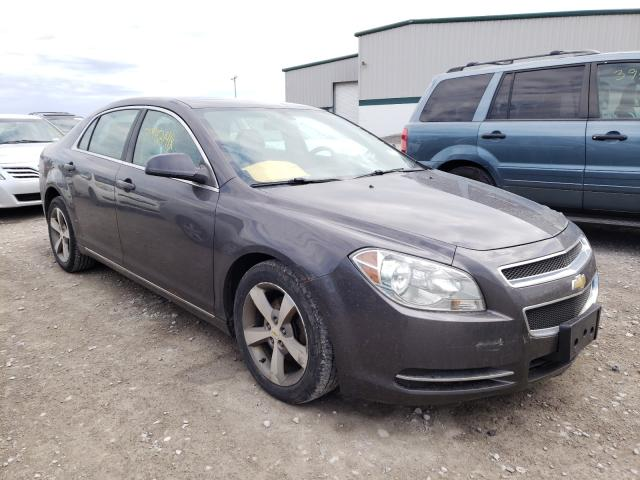 Salvage cars for sale from Copart Leroy, NY: 2011 Chevrolet Malibu 1LT