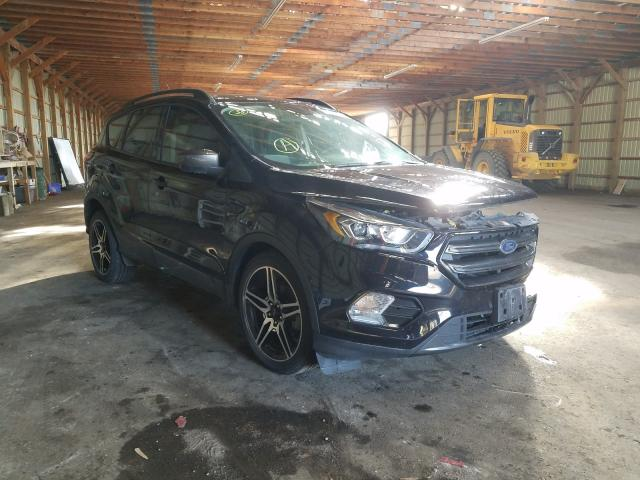 Salvage cars for sale from Copart London, ON: 2019 Ford Escape SEL