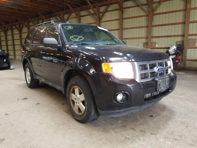 Salvage cars for sale from Copart London, ON: 2010 Ford Escape XLT