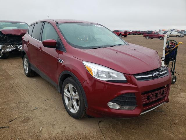 Salvage cars for sale from Copart Amarillo, TX: 2014 Ford Escape