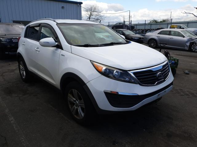 Salvage cars for sale from Copart Brookhaven, NY: 2011 KIA Sportage