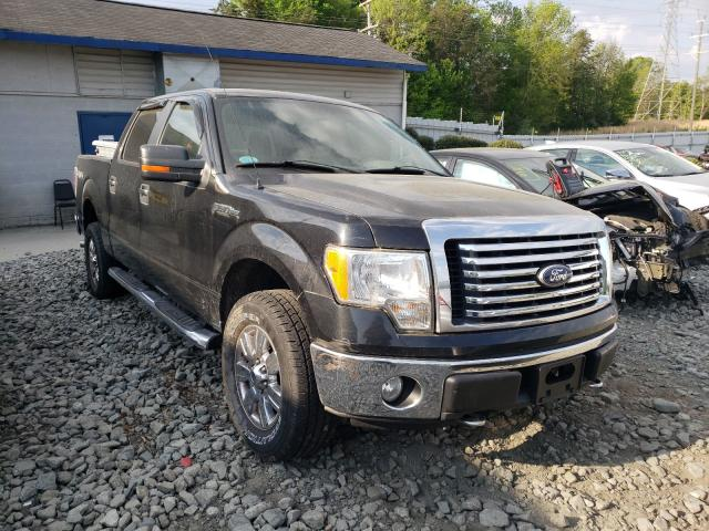 2010 FORD F150 SUPER 1FTEW1E88AFD74590