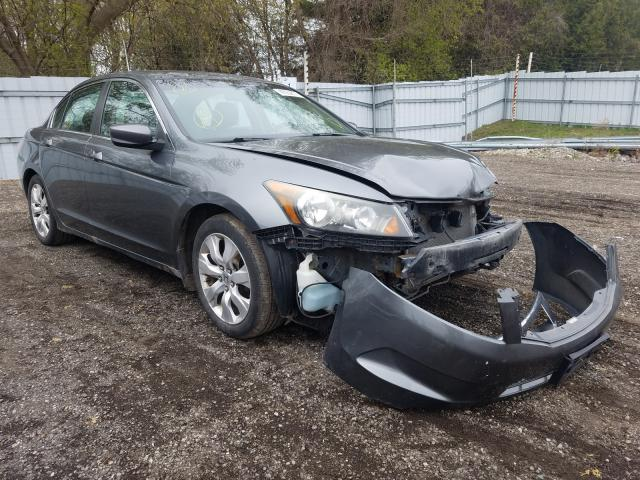 Salvage cars for sale from Copart London, ON: 2010 Honda Accord EXL