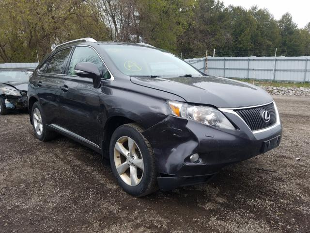 Salvage cars for sale from Copart London, ON: 2010 Lexus RX 350