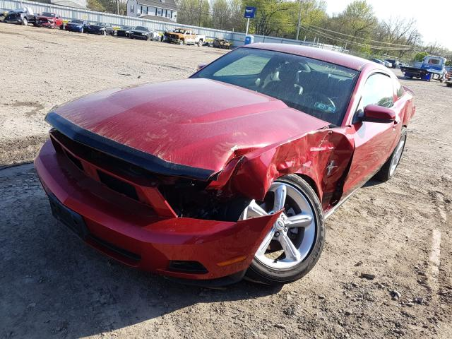 FORD MUSTANG 2010 1