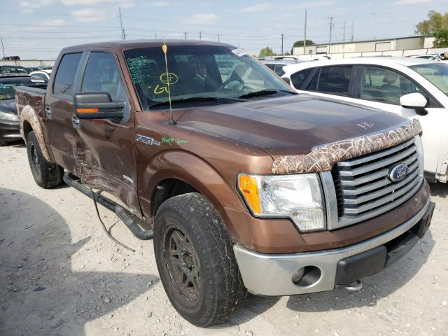 1FTFW1ET7BFC91002-2011-ford-f-150