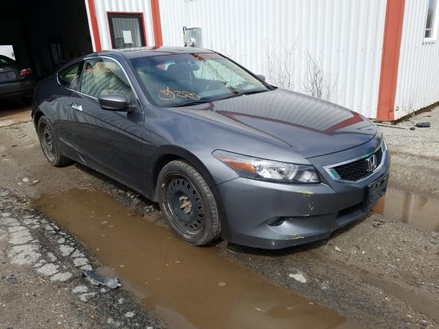 Salvage cars for sale from Copart Lyman, ME: 2009 Honda Accord EXL