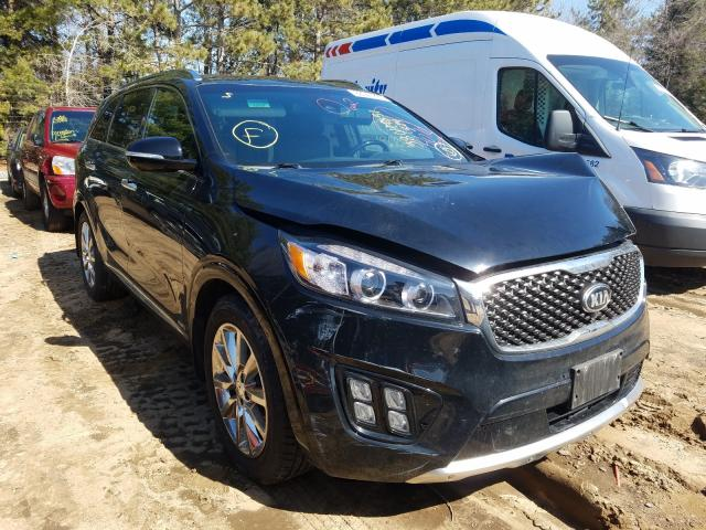 2016 KIA Sorento SX for sale in Ham Lake, MN