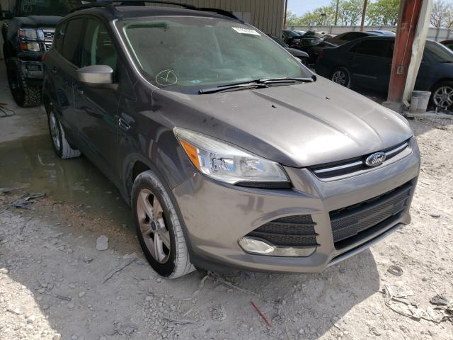 Salvage cars for sale from Copart Homestead, FL: 2014 Ford Escape SE