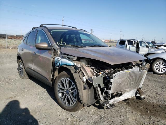 Salvage cars for sale from Copart Pasco, WA: 2020 Ford Escape SEL