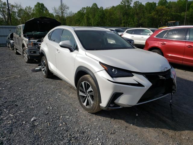 Salvage cars for sale from Copart York Haven, PA: 2019 Lexus NX 300 Base