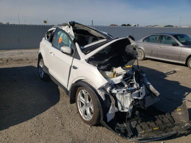 Salvage cars for sale from Copart Greenwood, NE: 2019 Ford Escape Titanium
