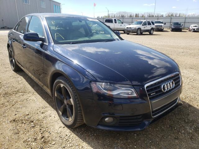 Salvage 2010 AUDI A4 - Small image. Lot 41869351