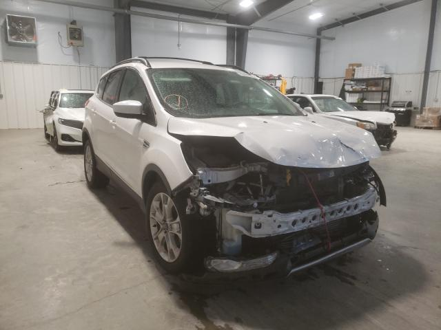 Salvage cars for sale from Copart Lumberton, NC: 2014 Ford Escape SE