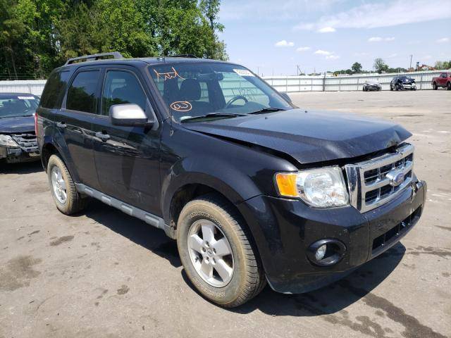 2011 FORD ESCAPE XLT 1FMCU9D77BKB99533