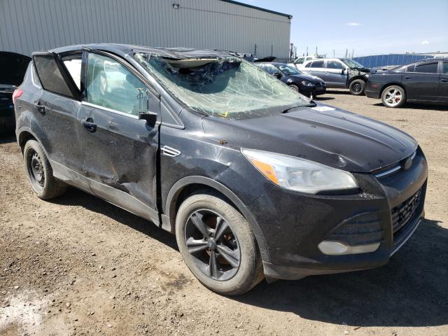 Salvage cars for sale from Copart Rocky View County, AB: 2013 Ford Escape SE