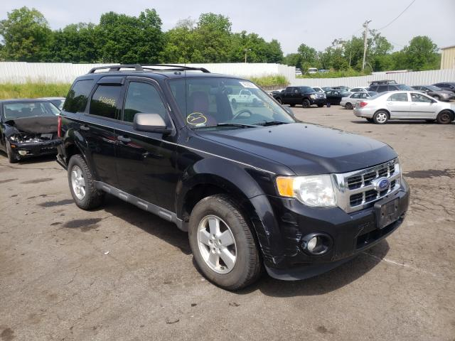 2011 FORD ESCAPE XLT 1FMCU0D70BKB94637