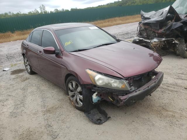 Salvage cars for sale from Copart Harleyville, SC: 2010 Honda Accord EXL