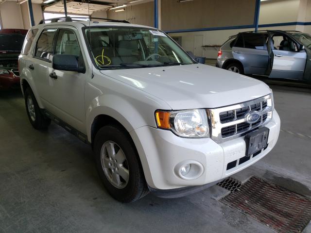 2009 Ford Escape XLT for sale in Pasco, WA