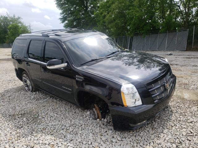 Salvage cars for sale from Copart Cicero, IN: 2014 Cadillac Escalade P