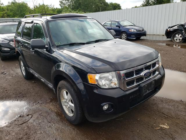 Salvage cars for sale from Copart Columbia Station, OH: 2010 Ford Escape XLT