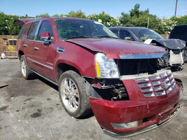 Salvage cars for sale from Copart San Martin, CA: 2011 Cadillac Escalade P