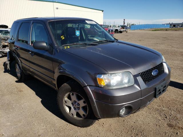 Vehiculos salvage en venta de Copart Rocky View County, AB: 2006 Ford Escape LIM