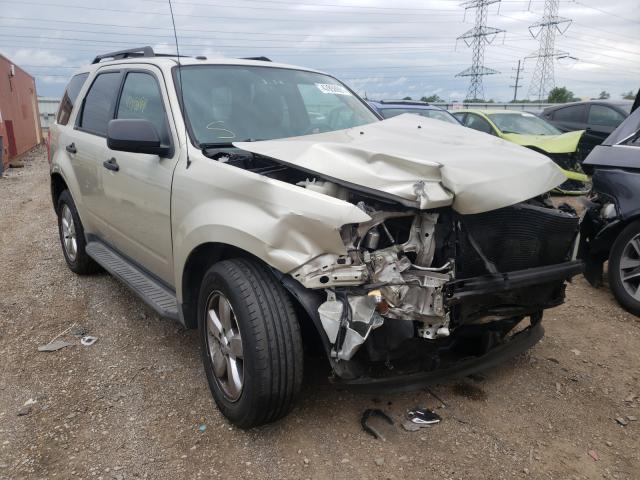 1FMCU0D75AKA11036-2010-ford-escape