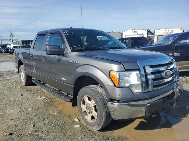Ford F-150 salvage cars for sale: 2012 Ford F-150