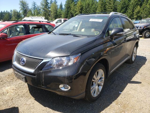 2011 LEXUS RX 450 JTJBC1BA1B2037221