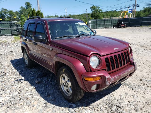 1J8GL58K33W560548-2003-jeep-liberty