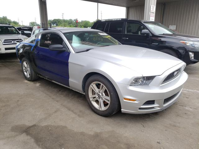 2013 FORD MUSTANG 1ZVBP8AM9D5226449