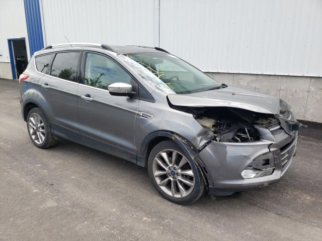 Salvage cars for sale from Copart Moncton, NB: 2014 Ford Escape SE