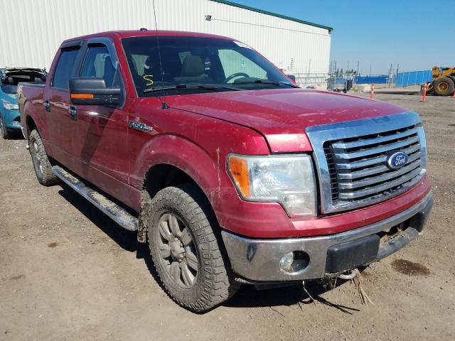 Salvage cars for sale from Copart Rocky View County, AB: 2010 Ford F150 Super