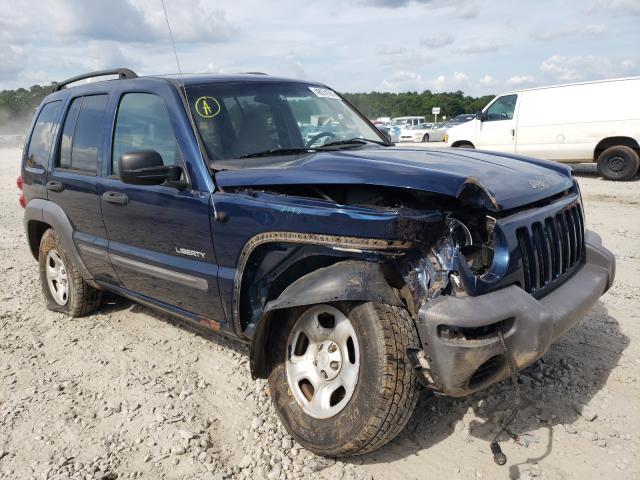 1J4GK48K74W273603-2004-jeep-liberty