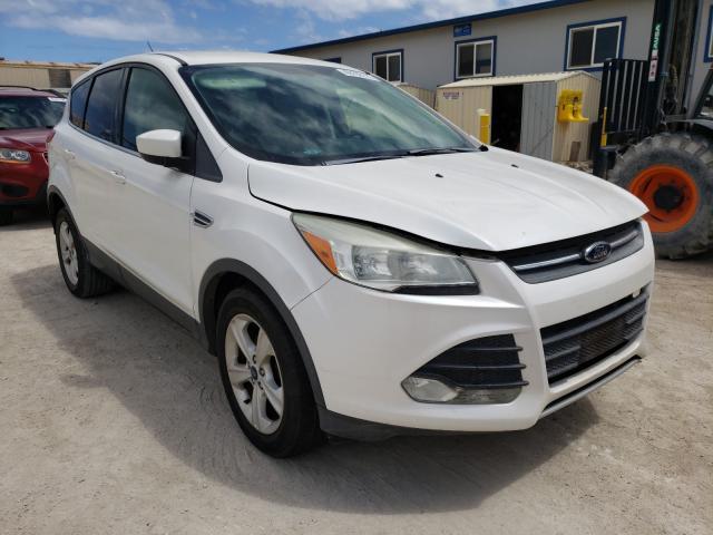 Vehiculos salvage en venta de Copart Kapolei, HI: 2014 Ford Escape SE