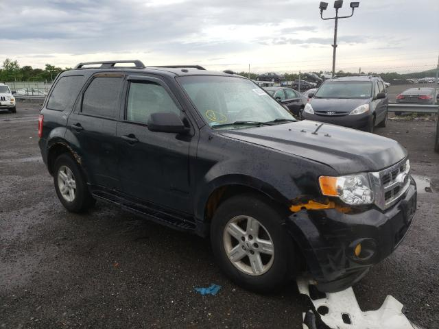 Clean Title Cars for sale at auction: 2010 Ford Escape Hybrid